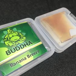 Banana Breeze 8/1 CBD/THC Premium Shatter By Buddha Extractions