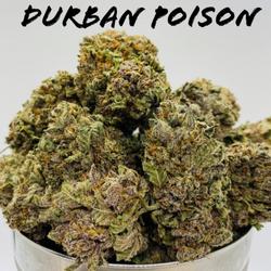 Durban Poison AAAA
