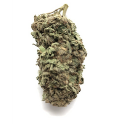 AAA+3A Sour Jack⛽ !(indica)SALE