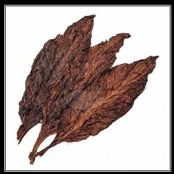 Kingquads - Hot Grabba leaf