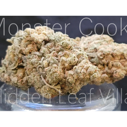 Monster Cookie