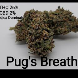 Pug's Breath AAAA Indica Dominate