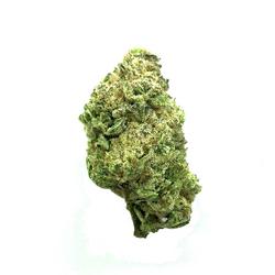 Gorilla Glue #4 by BlimBurn Seeds