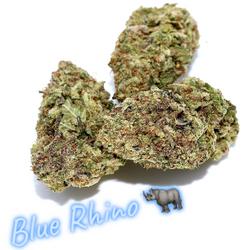 Blue Rhino  |  55% Indica / 45% Sativa | THC: 15% - 20%, CBD: 2%, CBN: 1%