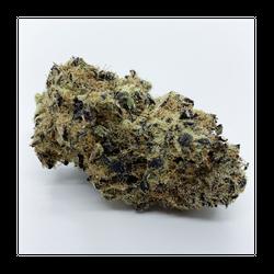 Black Gelato (5 Star / Sativa)