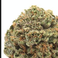 Purple Afghani????20%THC?