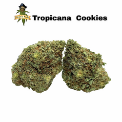 Tropicana Cookies ? AA+ 26%THC - SOLD OUT