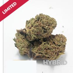 Orange Cookies??AA Hybrid $80oz DEAL
