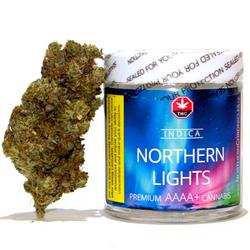 Northern Lights ✨ (Craft!)
