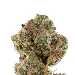 Recon 🔼24%THC 🔼 🚀🚀🚀🚀💨TASTE + PRICE DEAL💨