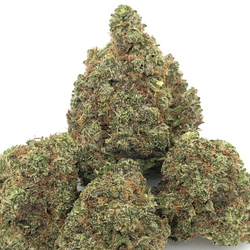 Grand Daddy Purple - *$5/gram Special*