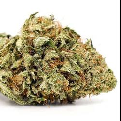 ❌❌ Violator Kush❌❌   THC:19-23%  ▪80/20 Indica▪    ⭐$100/OZ's!!⭐