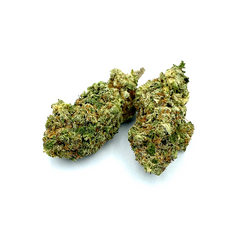 [AAA+]  Pink Anxiety *Indica*