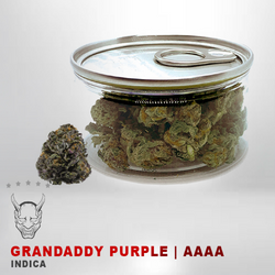 Grandaddy Purple Tuna can - AAAA - INDICA