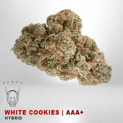 White Cookies - AAA+ - HYBRID
