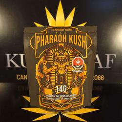 Pharaoh Kush 14 G Pkg Sunburn AAAA
