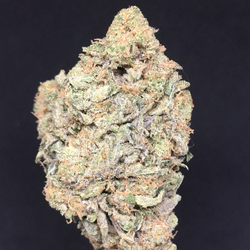Bruce Banner (AAAA) Craft Cannabis Sativa Leaning Hybrid SALE WAs 240$/Oz Now 200$/Oz