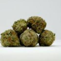 Green Goblin   (Mid Grade) THC 24%