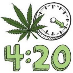 #3 The NEW 420 Flower Deal (Sativa, Hybrid, Indica) 4 Oz + 400MG Gummy Save 170$