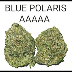 BLUE POLARIS AAAAA