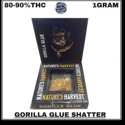 GORILLA GLUE SHATTER(HYBRID)