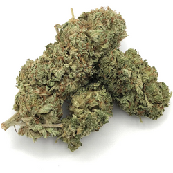 🥇🥇 KING KUSH🥇🥇 THC:20-23%    ▪90/10 Indica▪  ⭐$100/OZ'S!!⭐