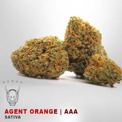 Agent Orange - AAA - SATIVA