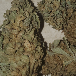 *SPECIAL* ORGANIC PINK CRACK 33%THC INDICA AAA $85 0Z
