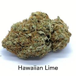 $150 Oz Hawaiian Lime AAAA+  Sativa (Regular $250)