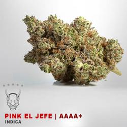 Pink El Jefe - AAAA+ - INDICA