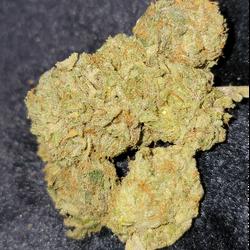 White Cookies ⭐⭐⭐⭐ - 70 Indica / 30 Sativa