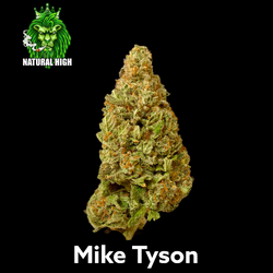Mike Tyson AAA++ 28% THC (50%OFF= $115 AN OZ)