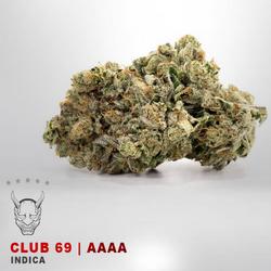 Club 69 - AAAA - INDICA