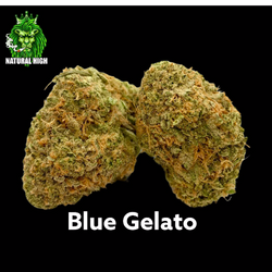Blue Gelato AAAA+ - SOLD OUT