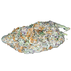 Glookies and Cream -Five Star Boutique - Indica Dominant Hybrid