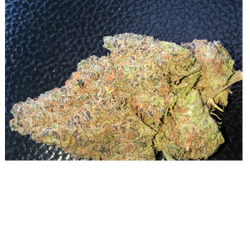 Purple Dragon 🐉