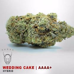 Wedding Cake - AAAA - HYBRID