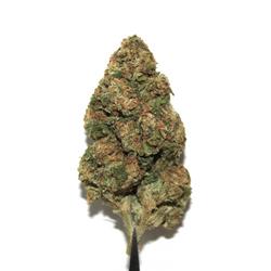 *CLEARANCE* SKYWALKER OG [AA+] INDICA 21% THC