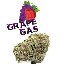 Grape Gasoline | Hybrid - 50% Sativa /50% Indica | THC: 15% - 23%, CBD: 1%
