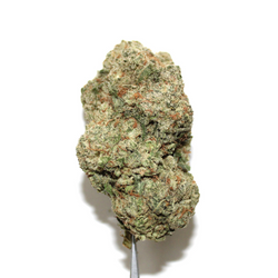 CHERRY MIMOSA [AAA] SATIVA 24% THC (Buy 1 oz get 1/2 oz for FREE!!)