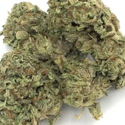 ⚜⚜ HINDU KUSH⚜⚜   THC-24-32%  ▪Indica▪   ⭐$100/OZ's!!⭐