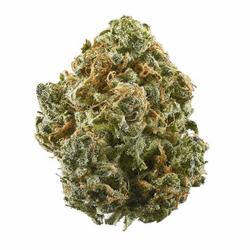 Purple Kush - AA+ - INDICA - $120/Oz