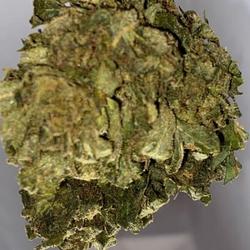 Gg4???1/2 ?23%THC ?