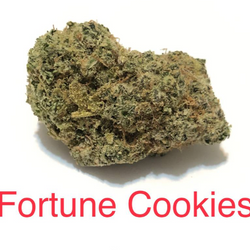 FORTUNE COOKIES - $75 GOLD PREMIUM PACKAGE