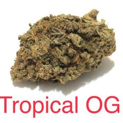 TROPICAL OG - $125 CRAFT PACKAGE!!!!