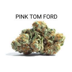 PINK TOM FORD