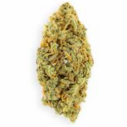 UK Cheese (THC 23 %) AAA  - Get FREE GUMMY When Purchase 1 oz
