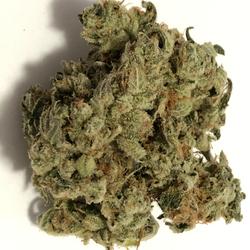 AAAA+Gorilla Glue-28%THC-Sativa