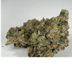 **new** Dairy Queen #6  by CE Headoffice (5star Exotic) Rare!!