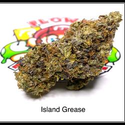 """""""AAAA"""" Island Grease"""